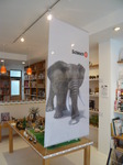 アフリカ象看板.jpg