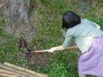 竹の子堀.jpg